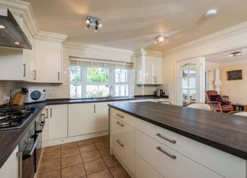 Thumbnail 4 bedroom bungalow for sale in Newton St. Faith, Norwich, Norfolk