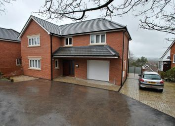 Thumbnail 6 bedroom detached house for sale in Leg Of Mutton Road, Glastonbury