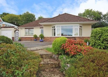 Thumbnail 3 bed detached bungalow for sale in Clay Street, Whiteparish, Salisbury