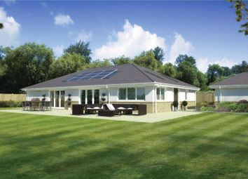 Thumbnail 3 bed detached bungalow for sale in Cedar Avenue, St. Leonards, Ringwood