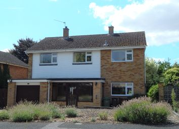 Thumbnail 4 bed detached house to rent in Norwood Avenue, Southmoor, Abingdon
