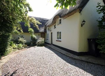 Thumbnail 4 bed cottage for sale in Middlehill Road, Wimborne