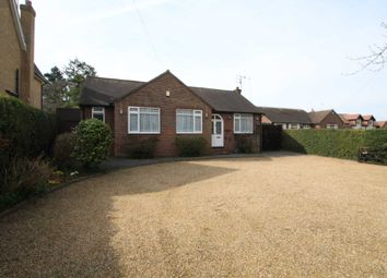 Thumbnail 3 bed bungalow to rent in Tring Road, Northchurch, Berkhamsted
