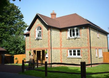 Thumbnail 4 bed detached house to rent in Reigate Road, Epsom