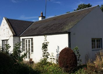 Thumbnail 4 bed bungalow to rent in Three Houses, Auchendinny, Midlothian
