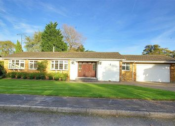 Thumbnail 2 bed bungalow for sale in Ash Close, Brookmans Park, Hatfield