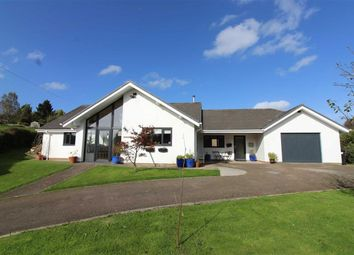 Thumbnail 4 bedroom detached bungalow for sale in High Street, The Pludds, Ruardean