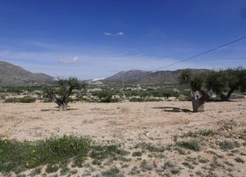 Thumbnail Land for sale in Barbarroja, Hondón De Los Frailes, Alicante, Valencia, Spain