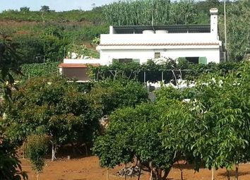 Thumbnail 4 bed property for sale in Zumacal (Valleseco), Valleseco, Spain