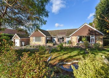 3 bed detached bungalow for sale in Church Street, Pulborough, West Sussex RH20