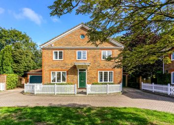 Thumbnail 4 bed detached house to rent in The Lawns, Ascot, Berkshire