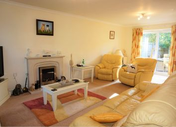 Thumbnail 4 bed detached house to rent in Ham Street, Baltonsborough