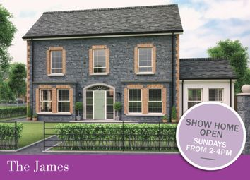Thumbnail 4 bed detached house for sale in Dillon Green, Meeting Street, Moira