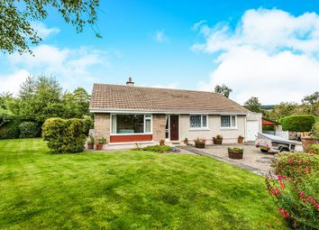 Thumbnail 3 bed bungalow for sale in Obsdale Park, Alness