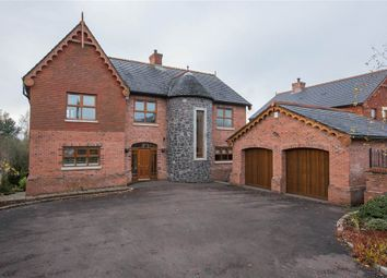 Thumbnail 5 bed detached house for sale in 29, Viewfort Park, Belfast