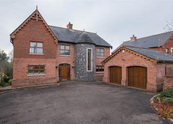 Thumbnail 5 bedroom detached house for sale in 29, Viewfort Park, Belfast
