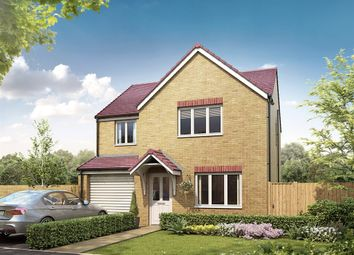 "Thumbnail 4 bed detached house for sale in ""The Roseberry"" at Bellona Drive, Peterborough"