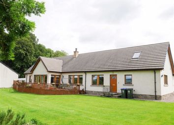 Thumbnail 3 bed detached house for sale in Newburgh, Cupar