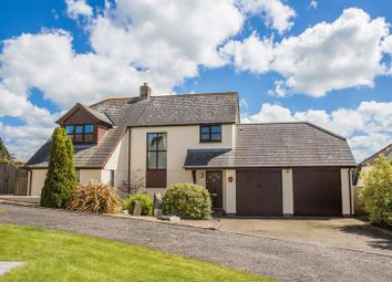 Thumbnail 3 bedroom detached house for sale in The Village, Wembworthy, Chulmleigh