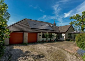 Thumbnail 5 bedroom detached bungalow for sale in Kerswell, Cullompton, Cullompton, Devon