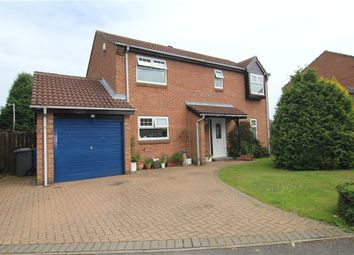 Thumbnail 4 bed detached house to rent in Priors Grange, High Pittington, Durham