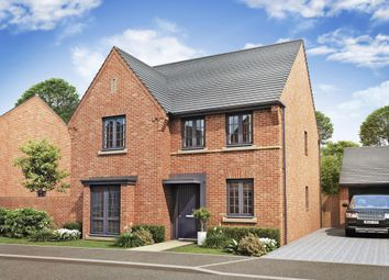 "Thumbnail 4 bed detached house for sale in ""Exmoor"" at Louisburg Avenue, Bordon"