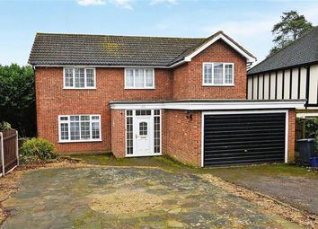Thumbnail 5 bed detached house to rent in Theydon Park Road, Theydon Bois, Epping