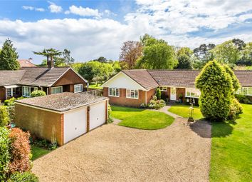 Thumbnail 4 bed detached bungalow for sale in Pyrford, Surrey