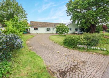 4 bed detached bungalow for sale in Mersea Road, Blackheath, Colchester CO2
