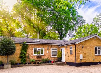 Thumbnail 3 bed bungalow for sale in Northiam Road, Staplecross