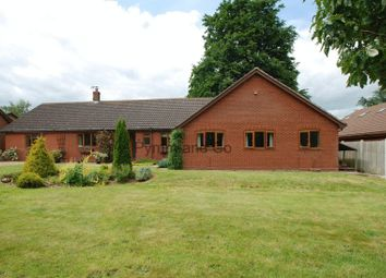 Thumbnail 6 bed detached bungalow to rent in Blofield Road, Brundall, Norwich