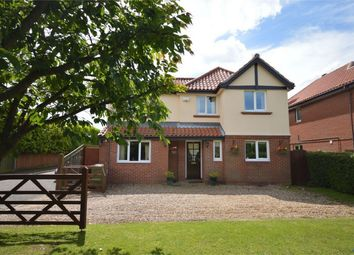 Thumbnail 5 bedroom detached house for sale in Sandhole Lane, Little Plumstead, Norwich