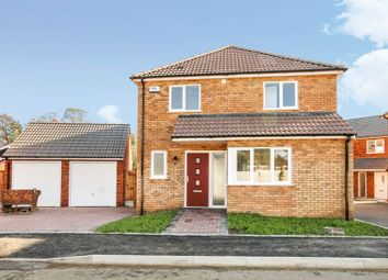 Thumbnail 3 bed detached house for sale in 44 Homestead Close, Rayleigh