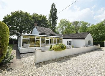 Thumbnail 3 bed detached bungalow for sale in Fen Lane, North Thoresby, Grimsby