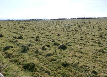 Thumbnail Land for sale in Part Of Pensarnddu Uchaf, Tanygroes, Cardigan