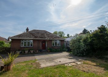 Thumbnail 4 bed bungalow for sale in Westcourt Lane, Shepherdswell