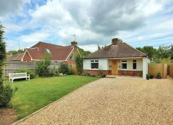 Thumbnail 4 bedroom bungalow to rent in Brighton Road, Shermanbury, Horsham