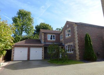 Thumbnail 5 bed detached house for sale in Woodpecker Crescent, Burgess Hill