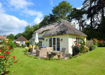 Thumbnail 3 bed cottage for sale in Pidney, Hazelbury Bryan, Sturminster Newton