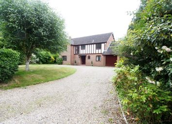Thumbnail 4 bedroom detached house to rent in Rectory Road, East Carleton, Norwich
