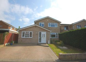 Thumbnail 4 bed detached house for sale in Briarswood, Springfield, Chelmsford