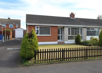 Thumbnail 3 bed bungalow to rent in Albany Road, Bangor