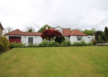 Thumbnail 3 bed property for sale in 56 Grange Terrace, Bo'ness