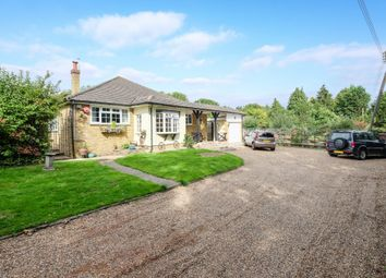 Thumbnail 4 bed detached bungalow for sale in Well Hill, Orpington