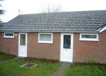 Thumbnail 1 bed property for sale in Lords Lane, Burgh Castle, Great Yarmouth