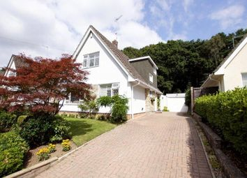 Thumbnail 3 bedroom detached house for sale in Wren Crescent, Poole, Dorset