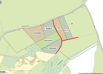 Thumbnail Land for sale in Prestwick Lane, Chiddingfold, Godalming