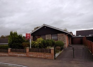 Thumbnail 3 bedroom detached bungalow to rent in Rosemary Drive, Lisburn