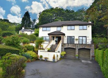 Thumbnail 4 bed detached house for sale in Victoria Road, Abersychan, Pontypool