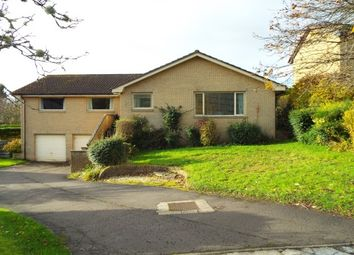 Thumbnail 4 bed bungalow to rent in Hopetoun Drive, Bridge Of Allan, Stirling